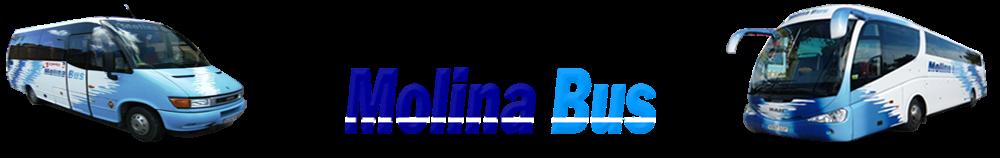 Autocares Molina Bus, s.l. Ciudad Real - Almagro -Valenzuela de Calatrava